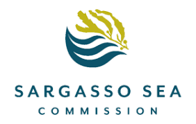 The Sargasso Sea Commission